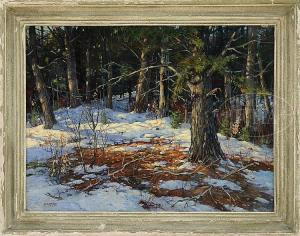 A.  Titus Earle -  Dappled Sunlight In Snowy Woodland.