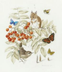 Mildred E. Eldridge - Study Of A Pied Flycatcher; And Forest Friends (illustrated)