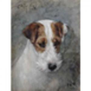 Frances Lansing - L. Fariman  Wirefox Terrier 'ch. Cackler Of Notts' Signed With Initials Andinscribed, Watercolour And Gouache 11 1/2 X9in