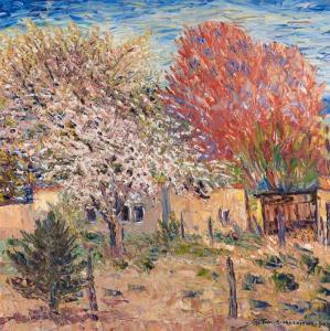 Thomas Silvestri Macaione - Spring Blossoms, Northern New Mexico