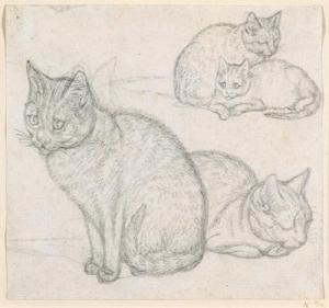 Gottfried Mind - A Double Sketch Of Two Cats