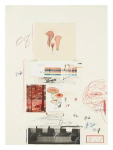 Cy Twombly - Natural History Part I